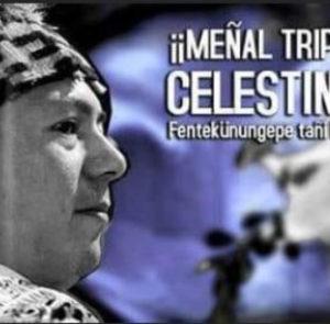 18 días en huelga de hambre: Reflexión y llamado del Machi Celestino Cordova