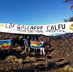 Apoyo a la recuperación de territorio mapuche