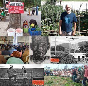 Argentina: Vecinos que luchan contra el agronegocio en el primer país en comercializar el trigo transgénico