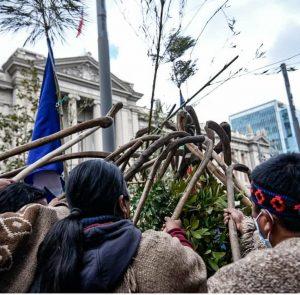 Desde la Asamblea Constituyente se negaron a recibir a 28 comunidades Mapuche