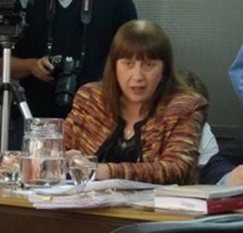 Fiscal Saguero