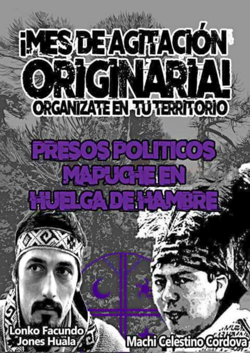 Resolución de las Comunidades alineadas al Movimiento Mapuche Autónomo del Puel Mapu
