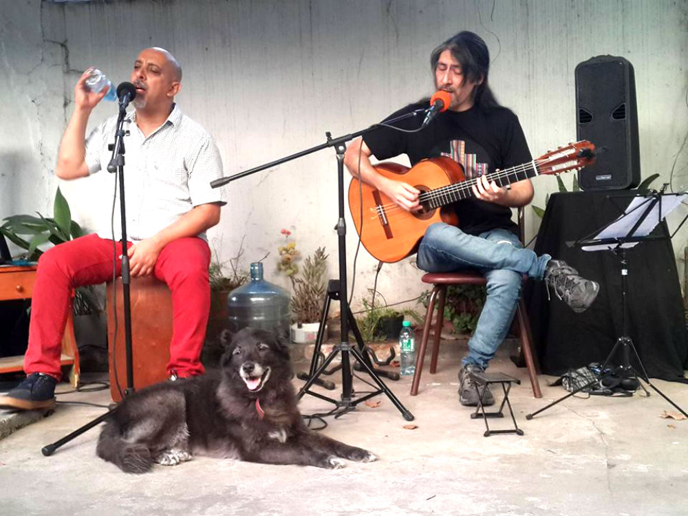 Música y amigos en el jardín - Sábado 25 a las 17 hs - Riobamba 3240 - San Andrés
