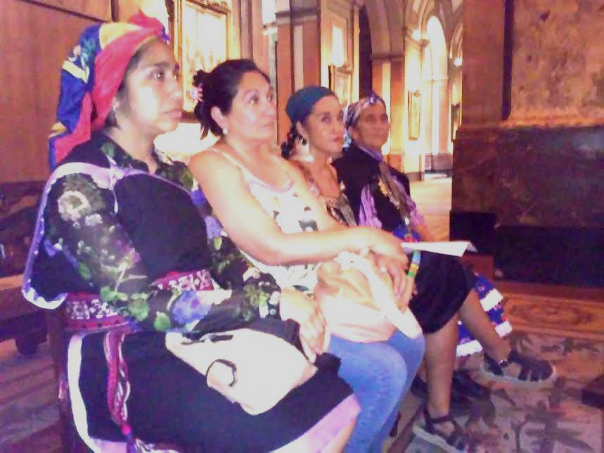 Mujeres mapuche ocupan la Catedral en reclamo de la libertad de Machi Francisca Linconao